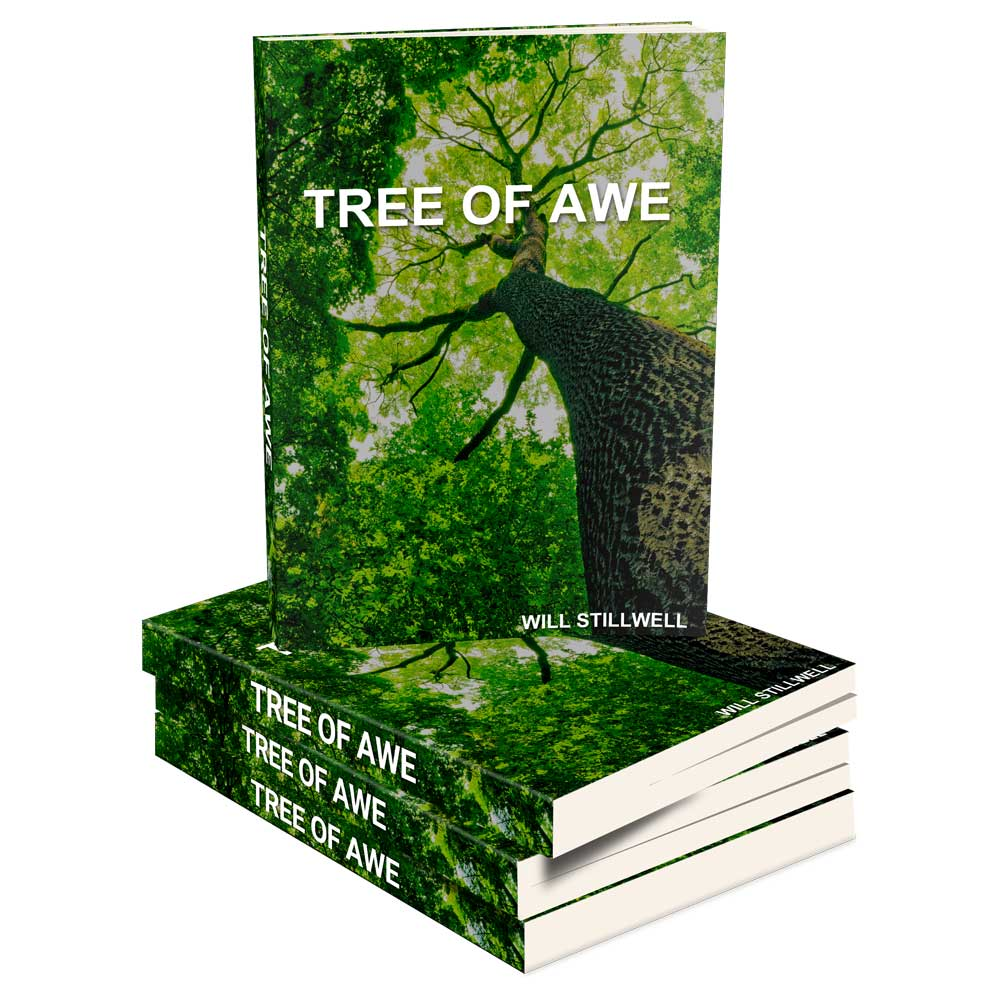 Tree of Awe | Center for Studies of the Person
